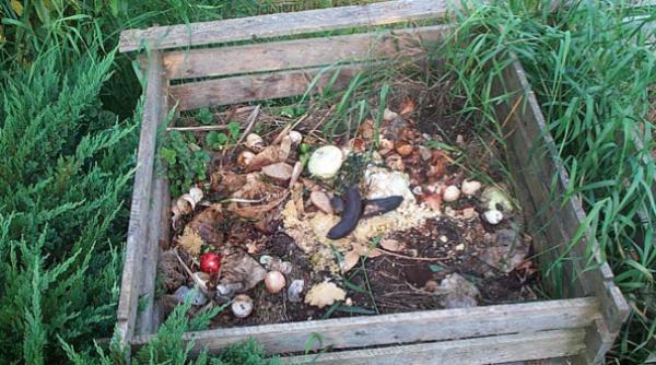 Quand compostage rime avec voisinage !