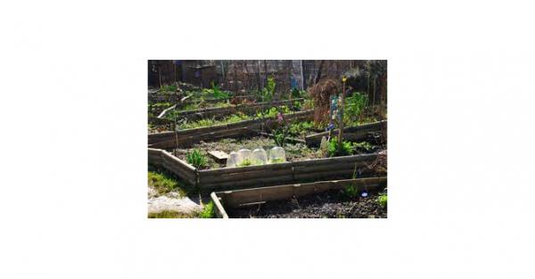 On a décidé de créer des jardins partagés alors qu'on dispose de peu de moyens