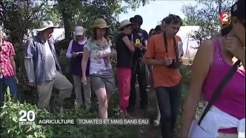 """""""On a décidé de démontrer qu'on pouvait faire pousser des légumes sans irrigation et produits chimiques."""""""