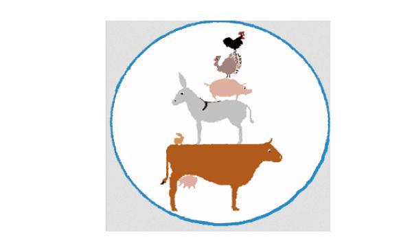 On a décidé d'agir pour la sauvegarde de la biodiversité des animaux fermiers
