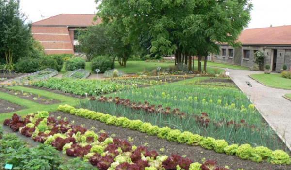 Et si on créait un jardin partagé intergénérationnel ?
