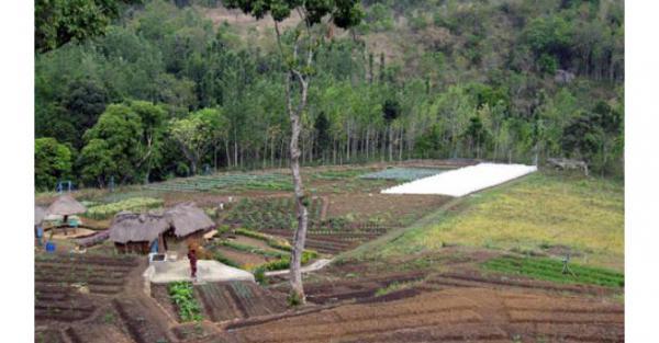 On a décidé d'aider les paysans indiens en leur donnant l'accès à des semences et à des formations en agro-écologie